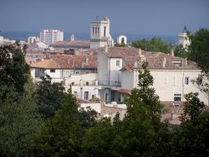 Nîmes - View of the bell tower of the Notre-Dame et Saint-Castor cathedral, houses and buildings of the town, trees in foreground