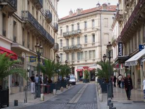 Nîmes - Shopping street lined with potted palms, shops and buildings