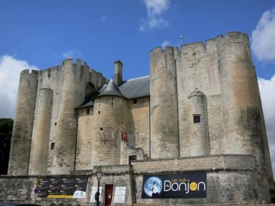 castelli della francia guida foto informazioni turismo. Black Bedroom Furniture Sets. Home Design Ideas