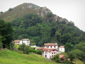 Nive valley - Houses at the foot of a wooded hill