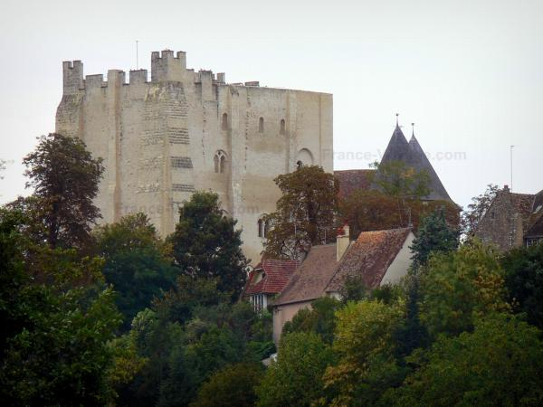 Nogent-le-Rotrou - Keep of the Saint-Jean castle, roofs of houses and trees; in Perche