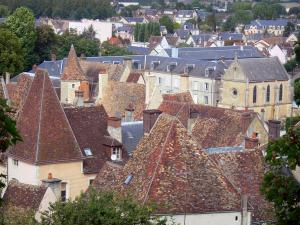 Nogent-le-Rotrou - Houses and buildings of the city