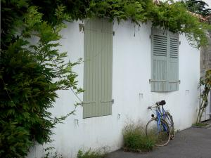 Noirmoutier island - Noirmoutier-en-l'Île: white house decorated with wisteria (creeper) and cycle (bicycle) against the facade