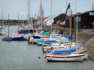 Noirmoutier island - Noirmoutier-en-l'Île: port with its moored boats
