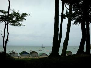 Noirmoutier island - Trees of the Chaise wood in foreground with view of the cubicles of the Dames beach and the boats on the sea (Atlantic Ocean)