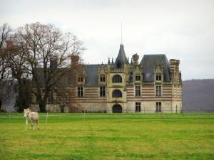 Norman Seine River Meanders Regional Nature Park - The Ételan castle of Flamboyant Gothic style, horse in a prairie and trees