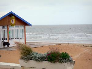 Notre-Dame-de-Monts - Seaside resort: plants and flowers in a gardener, bar of the beach and sea (Atlantic Ocean)
