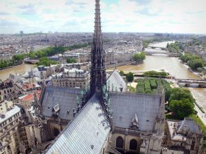 Notre-Dame de Paris cathedral - View of the spire of the cathedral, the Seine river and the rooftops of Paris
