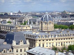 Notre-Dame de Paris cathedral - View of Paris and the dome of the Commercial Court from the heights of the cathedral