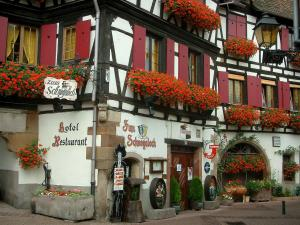 Obernai - White half-timbered house decorated with geranium flowers (geraniums)