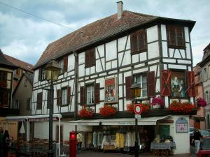 Obernai - White half-timbered house decorated with paintings and geranium flowers (geraniums), restaurant terrace and a shop