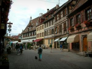 Obernai - Pedestrian street and half-timbered houses decorated with geranium flowers (geraniums), café terrace and shops