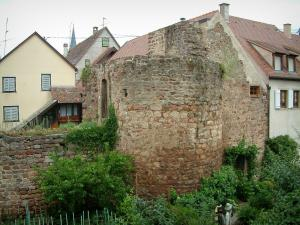 Obernai - Garden, vegetable garden, ramparts tower and houses