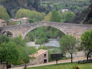 Olargues - Bridge spanning the River Jaur, houses, trees along the water, in the Upper Languedoc Regional Nature Park