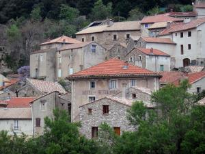 Olargues - Houses of the village and trees