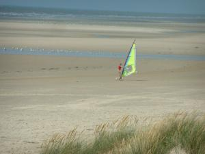 Opal Coast landscapes - Plants (psammophytes, beachgrass), sandy beach with someone speed-sailing (windsurfing board with wheels), gulls and the Channel (sea), at Hardelot-Plage (Regional Nature Park of Opal Capes and Marshes)