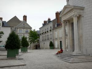 Orléans - Temple, shrubs in jars and houses of the old town