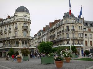 Orléans - Martroi square: buildings, shops, shrubs and rosebushes in jars