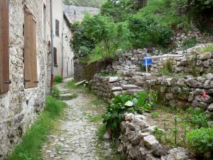 Orpierre - Terrace garden, alley and houses of the village