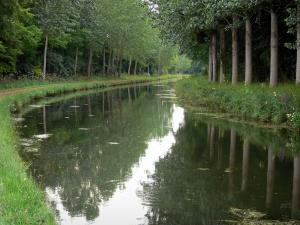 Ourcq canal - Canal lined with trees
