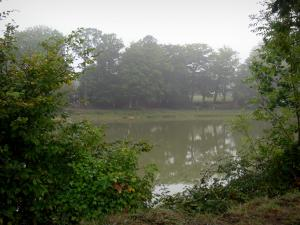 Paimpont - Lake of the village lined with trees and vegetation