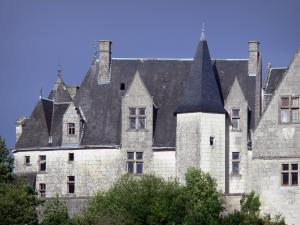 Palluau-sur-Indre - Facade of the feudal castle