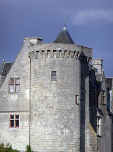 Palluau-sur-Indre - Tower and facade of the castle