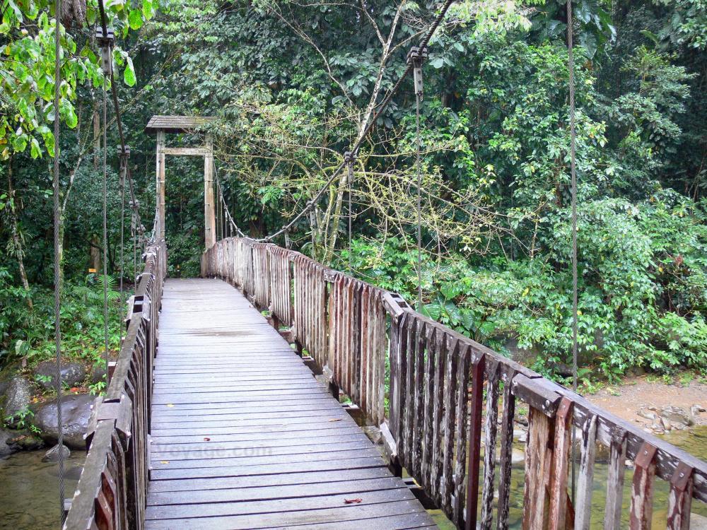 Photos parc national de la guadeloupe 23 images de Passerelle definition