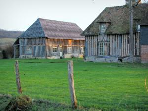 Pays d'Auge - Half-timbered farm