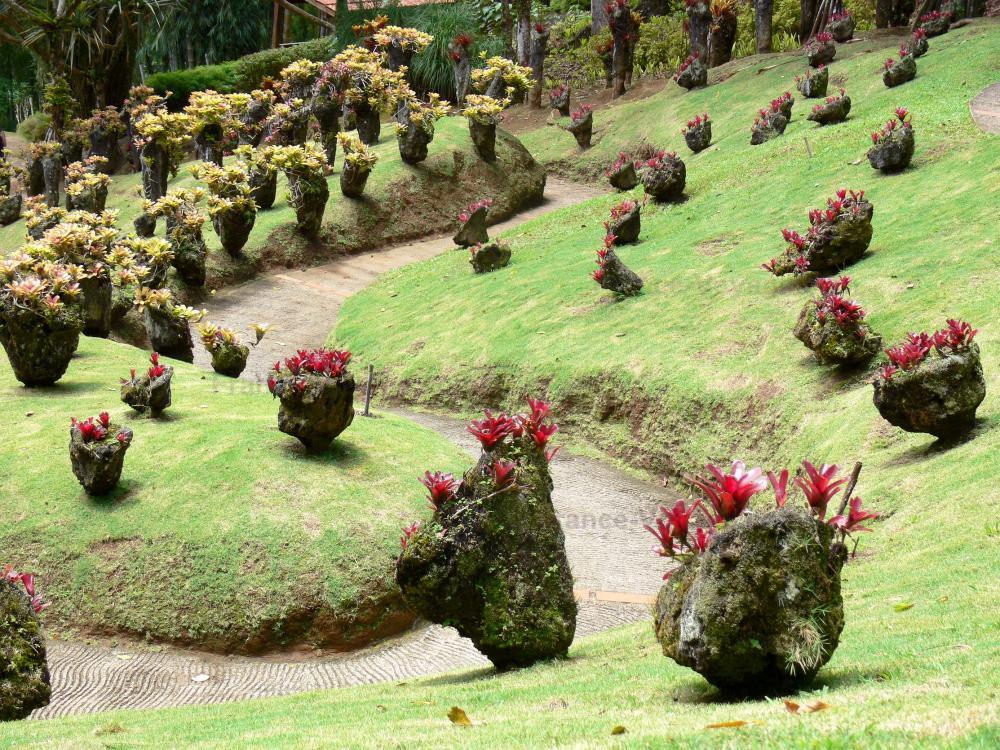 Photos Paysages De La Martinique 89 Images De Qualit En Haute D Finition