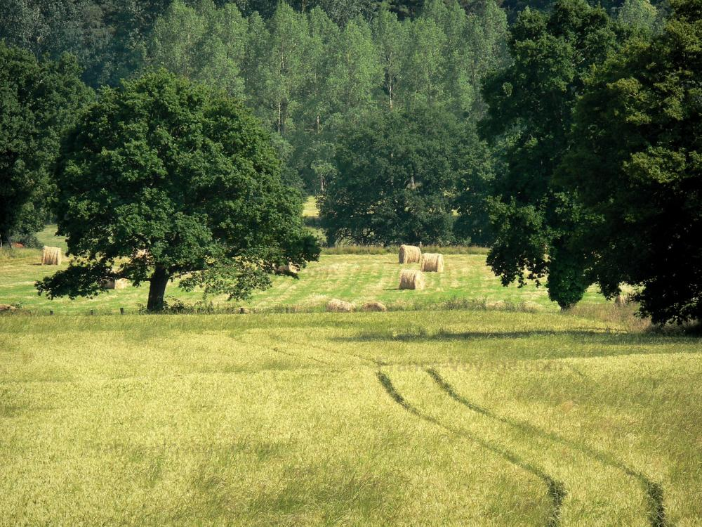 Photos paysages de la mayenne 24 images de qualit en for Paysage definition