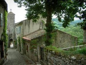 Penne - Narrow paved street leading to the Pont gateway with stone houses, tree, flowers, plants and forest in background