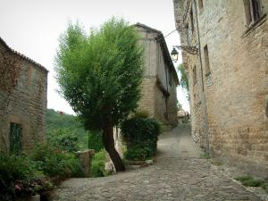 Penne - Pavement in foreground, narrow street lined with stone houses, tree, plants and flowers