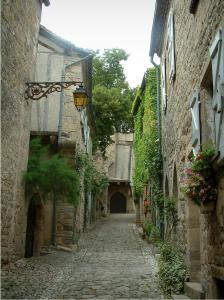 Penne - Narrow paved street with its stone houses and facades decorated with flowers and plants