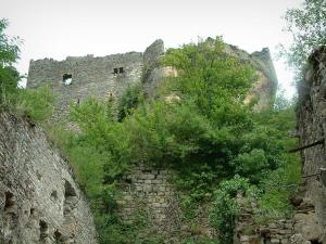 Penne - Trees and ruins of the castle (fortress)