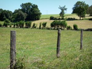 Perche Regional Nature Park - Closure of a meadow, fields and trees