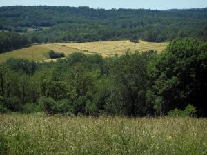 Périgord-Limousin Regional Nature Park - High vegetation in foreground, trees, fields with straw bales and forest