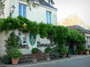 La Perrière - Maison d'Horbé house and its facade with wisteria, flowers and shrubs in pots