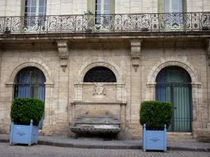 Pézenas - Old town: former consular house (Art professions house), shrubs in jars, paved ground