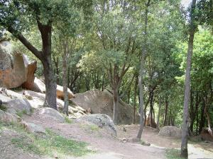 Piana forest - Footpath with trees and red granite rocks