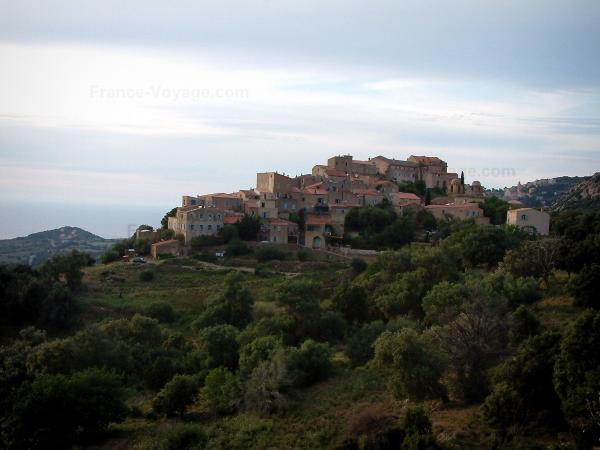 Pigna - Hilltop village of Pigna surrounded by trees and olive trees (in the Balagne region)
