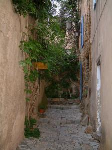 Pigna - Paved narrow street (stairway) and houses decorated with creepers (in the Balagne region)