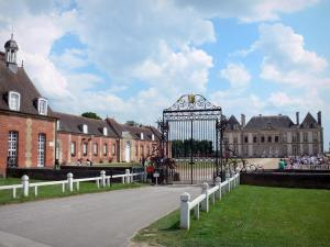 Le Pin national stud farm - Entrance gate, courtyard, castle and its outbuildings; in the town of Le Pin-au-Haras