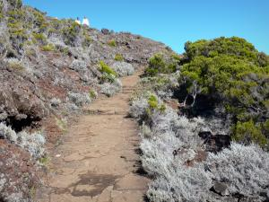 Piton de la Fournaise peak - Hiking trail leading to Nez Coupé of Sainte-Rose