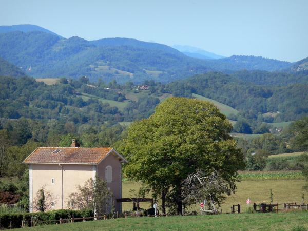 Plantaurel mountains - Cottage, trees, meadows and Plantaurel hills