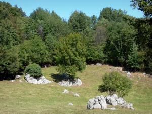 Plantaurel mountains - Grassland, rock and trees