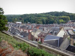 Poix-de-Picardie - View of the roofs of the houses in the city and trees