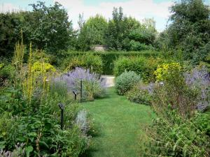 Pontoise - Park of the Pissarro museum: garden of the five senses with its aromatic and medicinal plants