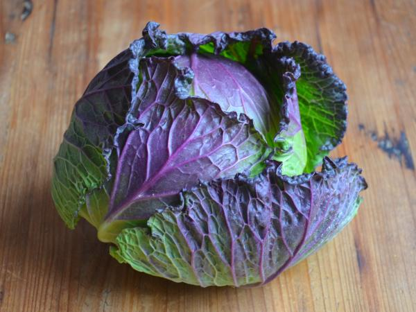 Pontoise cabbage - Gastronomy, holidays & weekends guide in the Val-d'Oise