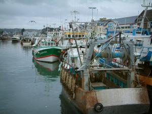 Port-en-Bessin - Boats and trawlers in the fishing port, sea bird flying, and turbulent sky